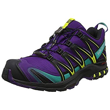 Salomon XA Pro 3D GTX Damen Traillaufschuhe (Acai/Black/Dynasty Green, 40 EU)