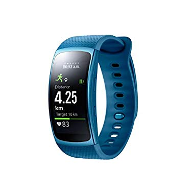 Samsung Gear Fit 2 Smartwatch (blau (S))